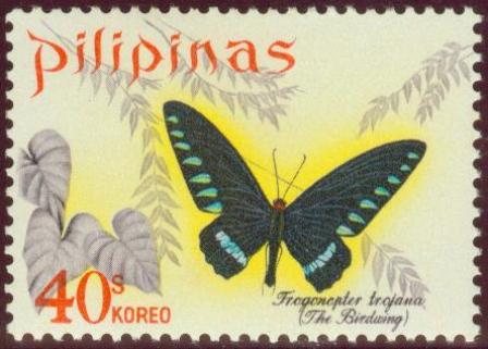 Butterflies-40s.jpg