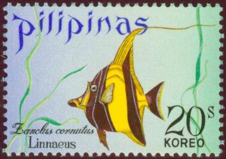 Fish-20s.jpg