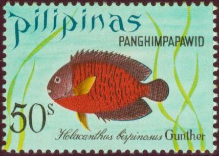 Fish-50s.jpg