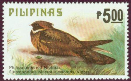 Birds-5p.jpg