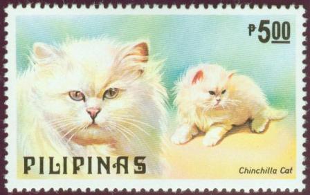 Cats-Dogs-5p.jpg